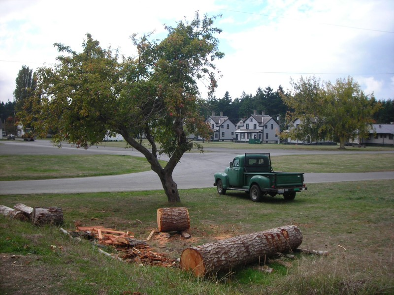 the scene outside the woodshop